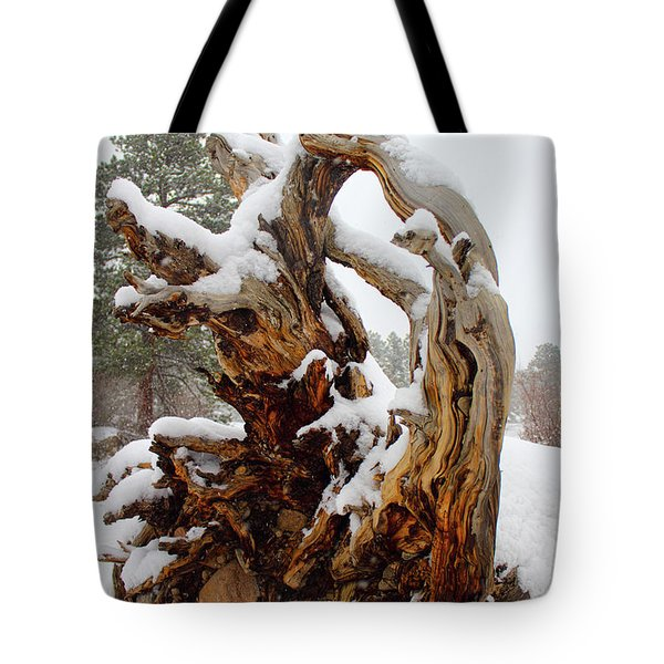Tote Bag featuring the photograph Snowy Roots 2 by Shane Bechler