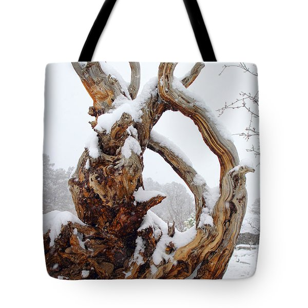 Tote Bag featuring the photograph Snowy Roots by Shane Bechler