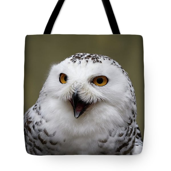 Tote Bag featuring the photograph Snowy Sings by Michael Hubley