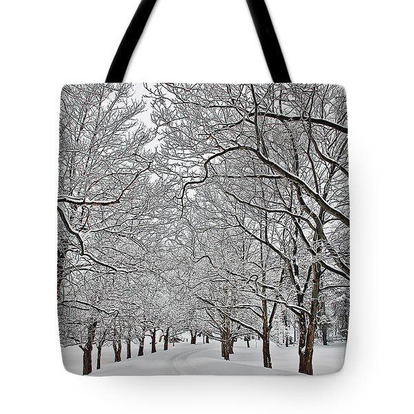 Snowy Treeline Tote Bag by Aimee L Maher Photography and Art Visit ALMGallerydotcom