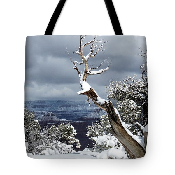 Tote Bag featuring the photograph Snowy View by Laurel Powell