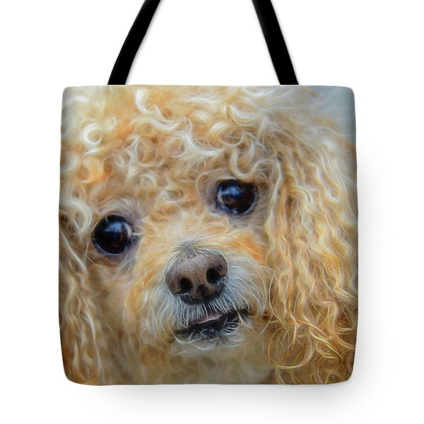 Snuggles Tote Bag by Steven Richardson
