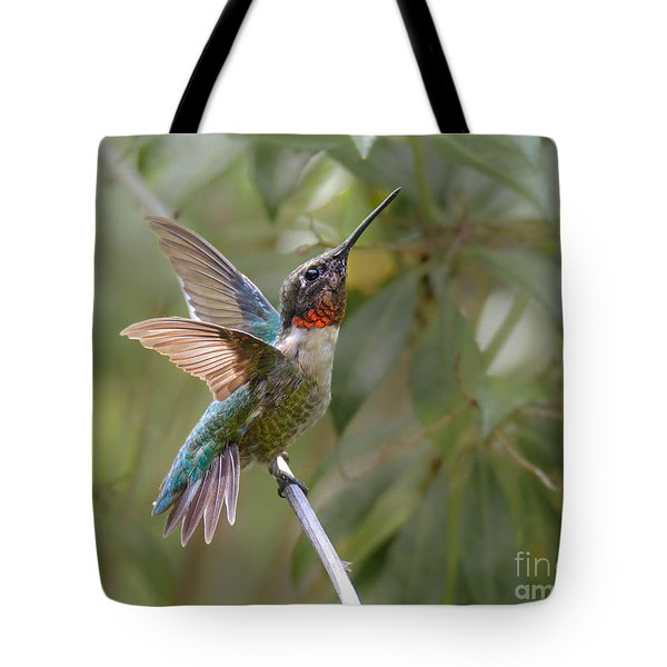 So Handsome Tote Bag by Amy Porter