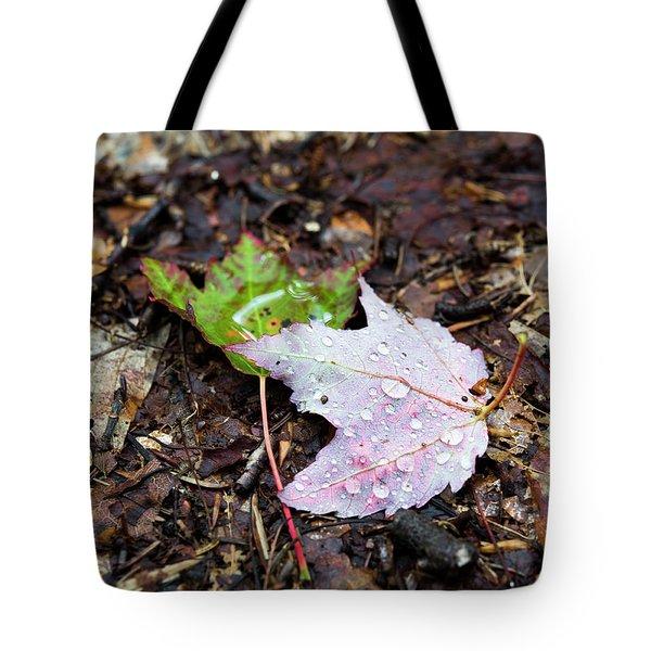 Soaken Leaves Tote Bag