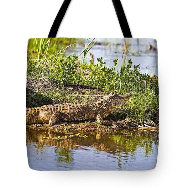 Soaking In The Sun Tote Bag by Scott Pellegrin