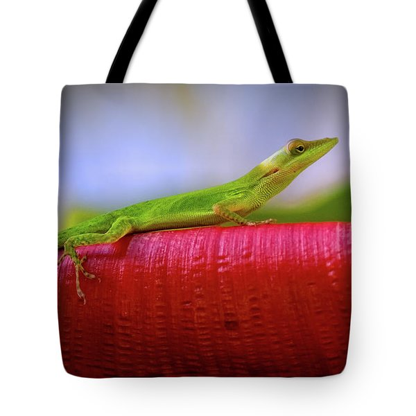 Soaking Up The Sun Tote Bag by Doug Sturgess