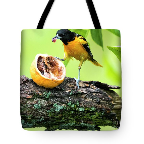 Soaking Wet Baltimore Oriole At The Feeder Tote Bag