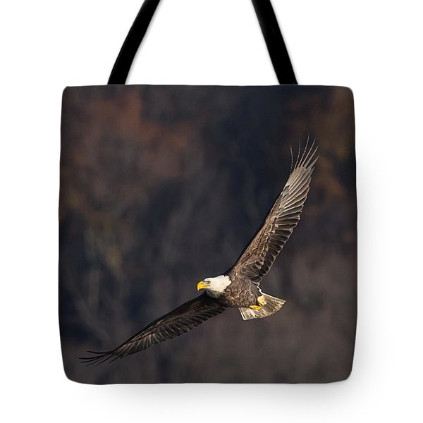 Tote Bag featuring the photograph Soaring by Cindy Lark Hartman