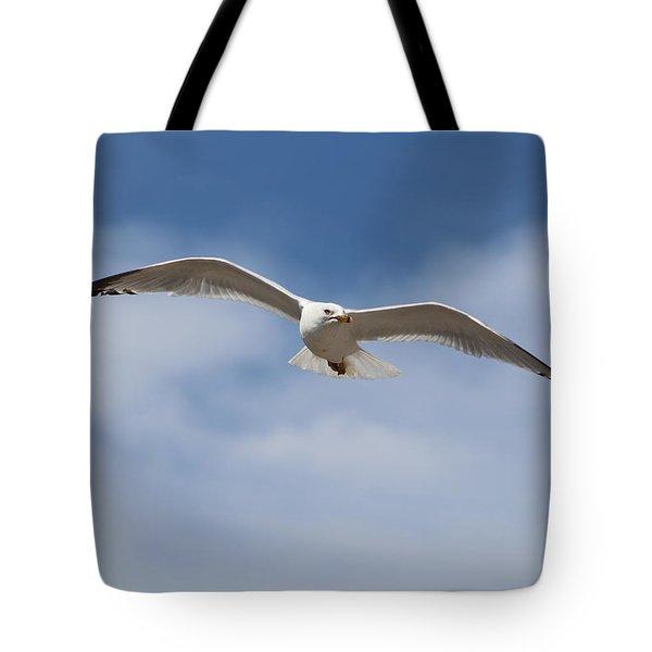 Soaring Free Tote Bag