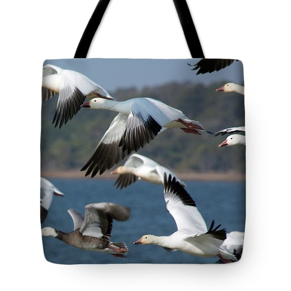 Soaring On The Wing Tote Bag