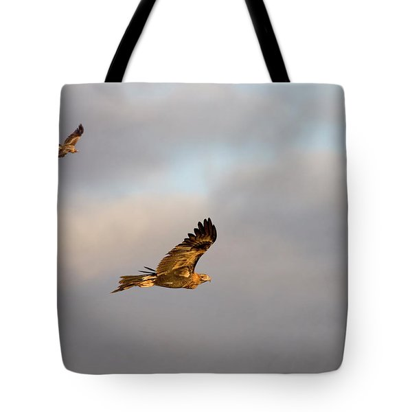 Soaring Pair Tote Bag by Mike  Dawson