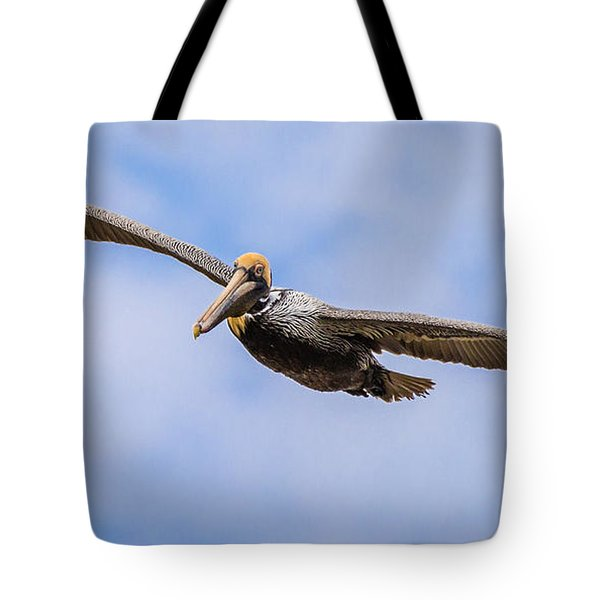 Tote Bag featuring the photograph Soaring Pelican by Gregory Daley  PPSA