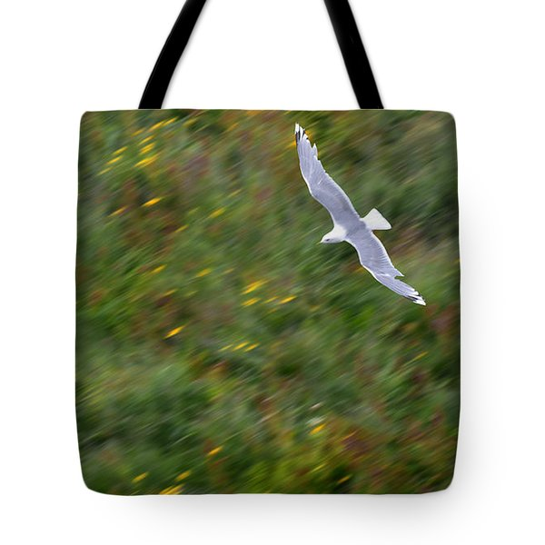 Tote Bag featuring the photograph Soaring Seagull by Joe Bonita