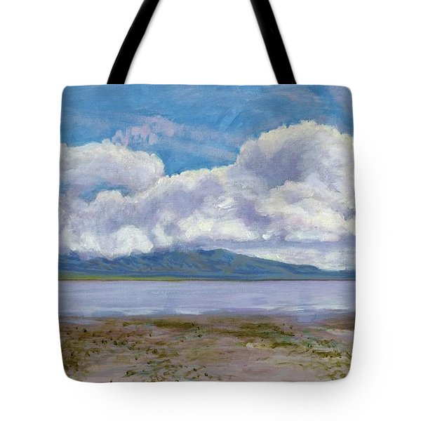Soda Lake After The Storm Tote Bag