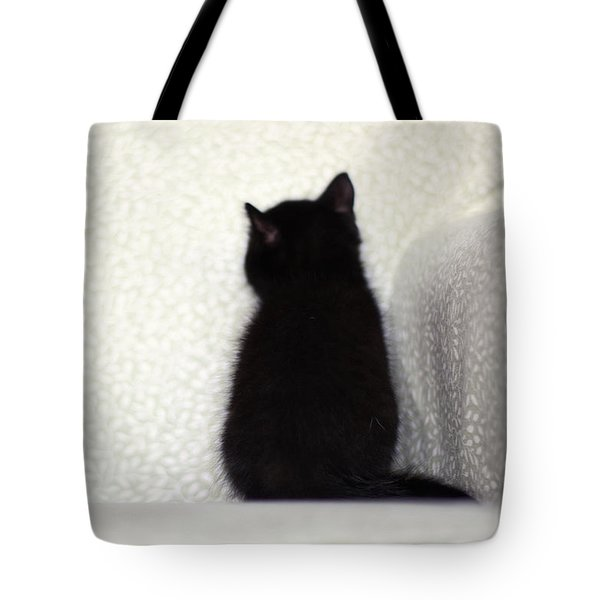 Tote Bag featuring the photograph Sitting Kitty by Amy Tyler