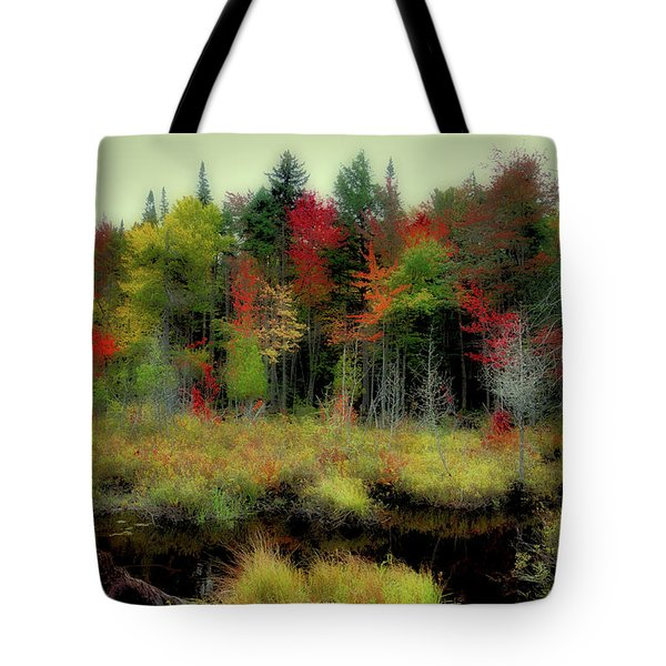 Tote Bag featuring the photograph Soft Autumn Color by David Patterson