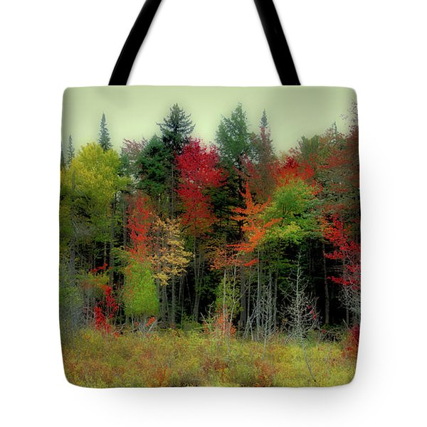 Tote Bag featuring the photograph Soft Autumn Panorama by David Patterson