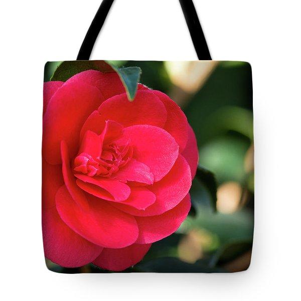 Soft Kiss Tote Bag