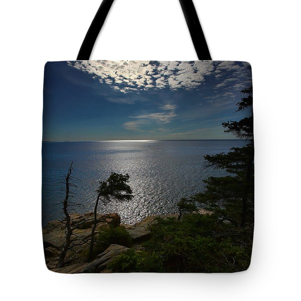 Soft Light On Otter Point Tote Bag