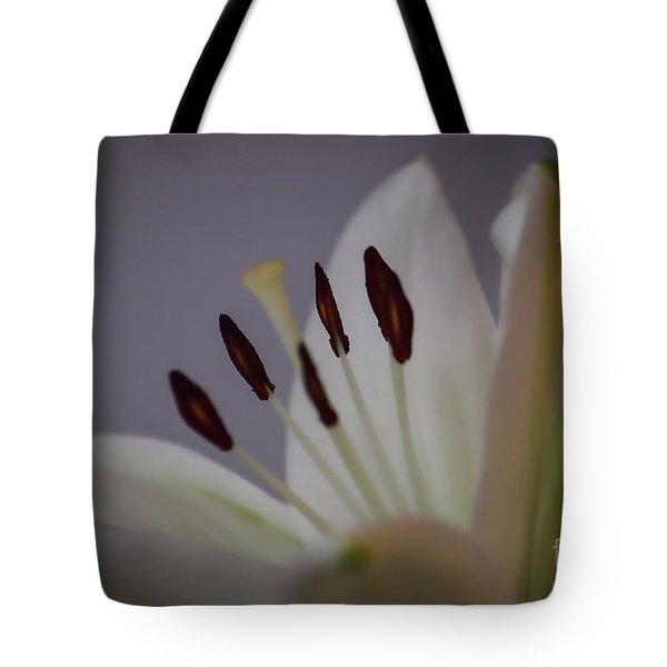 Soft Lily Tote Bag by Roberta Byram