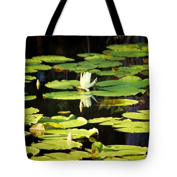 Tote Bag featuring the photograph Soft Morning Light by Jan Amiss Photography