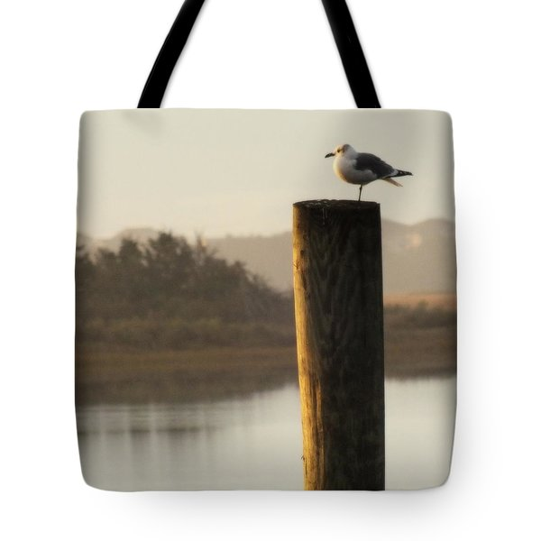 Soft Mornings Tote Bag by Karen Wiles