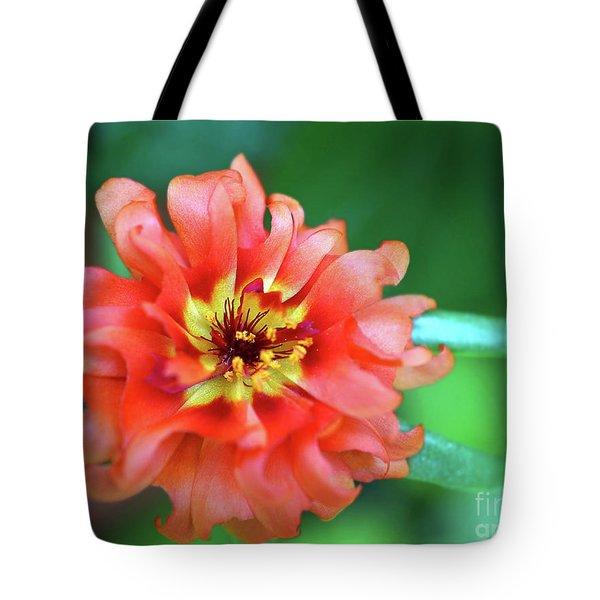 Soft Peach Ruffled Petals Tote Bag by Sue Melvin