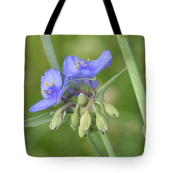 Soft Purple Spider Tote Bag