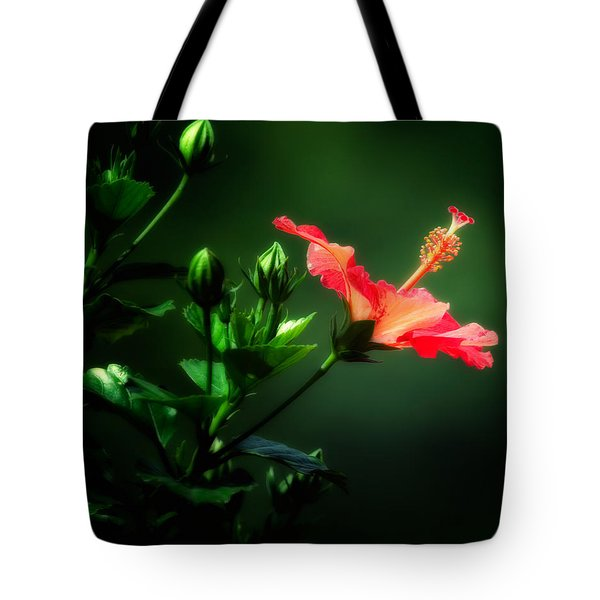 Soft Red Hibiscus Plant Tote Bag
