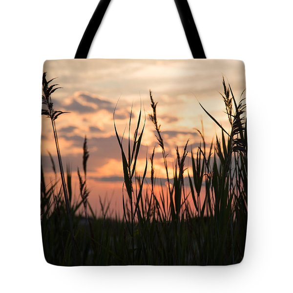 Tote Bag featuring the photograph Soft Sunset by Jose Oquendo