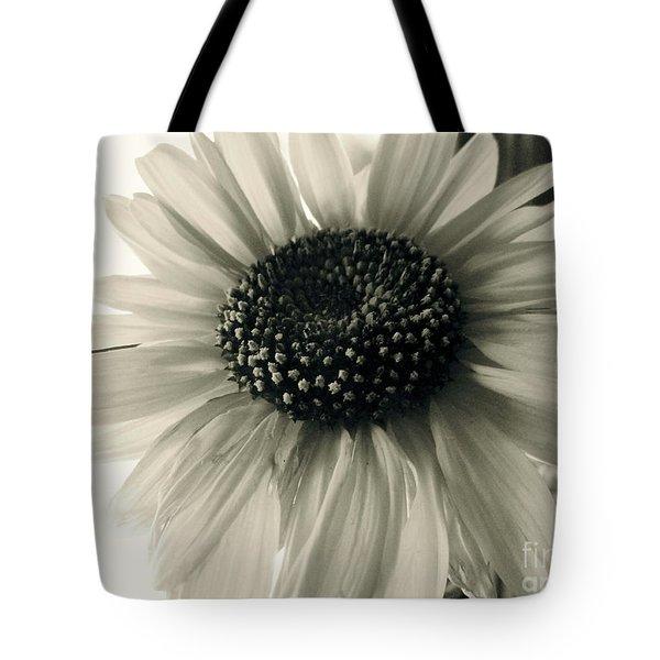 Soft White Light Tote Bag by Trish Hale