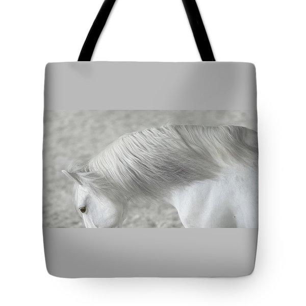 Softly Swept Tote Bag