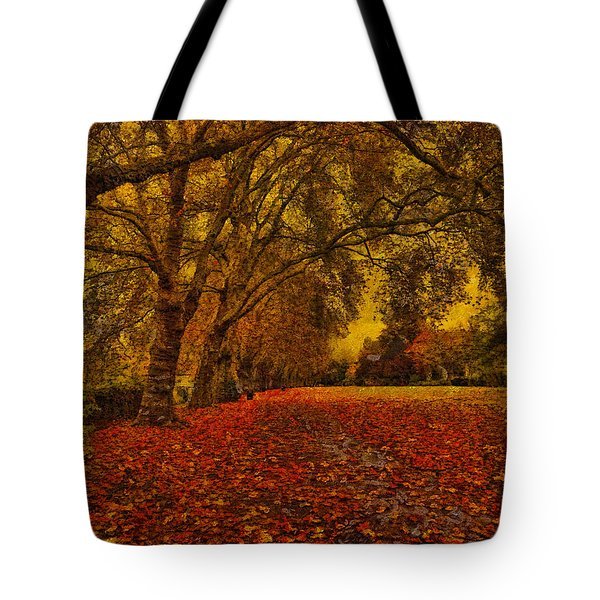 Softly Falls The Evening  Light Tote Bag