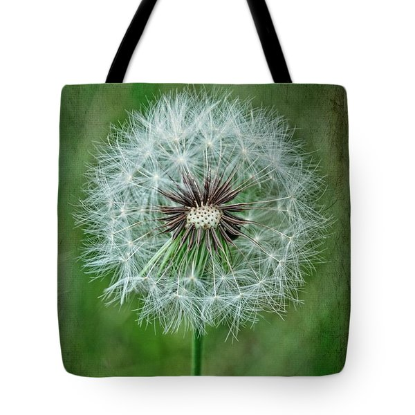 Tote Bag featuring the photograph Softly Sitting by Jan Amiss Photography