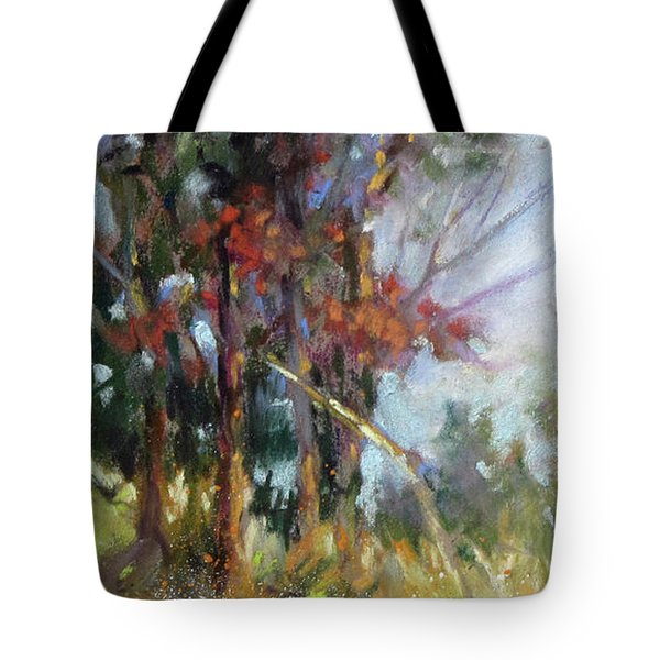 Softly, Softly Tote Bag by Rae Andrews