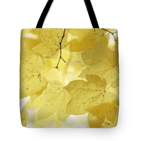 Softness Of Yellow Leaves Tote Bag by Jennie Marie Schell