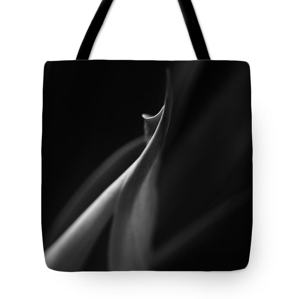 Softserve Swirl Tote Bag by Tim Good