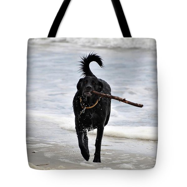 Soggy Stick Tote Bag