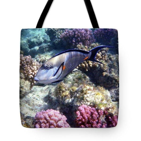Sohal Surgeonfish 5 Tote Bag