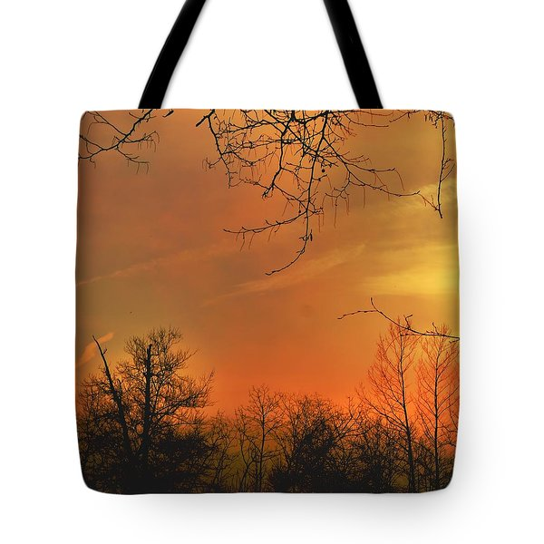 Tote Bag featuring the photograph Solara by EDi by Darlene