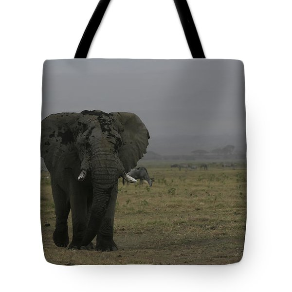 Tote Bag featuring the photograph Solitary Bull Elephant by Gary Hall
