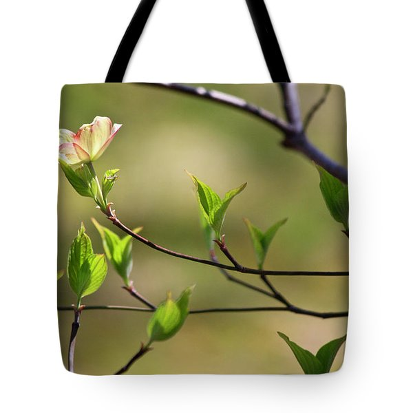 Solitary Dogwood Bloom Tote Bag by Teresa Mucha