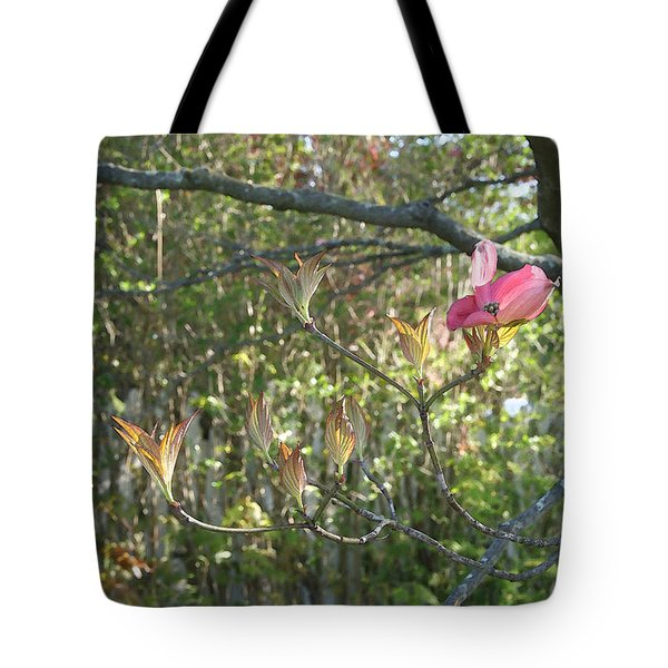 Solitary Dogwood Blossom In Pink Tote Bag