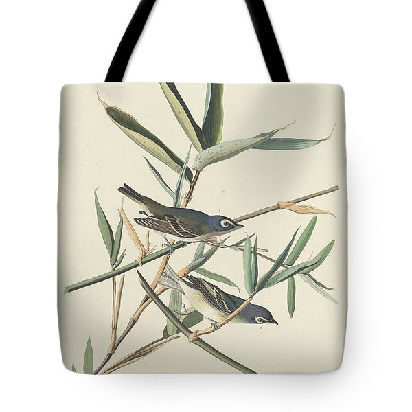 Solitary Flycatcher Tote Bag by Rob Dreyer