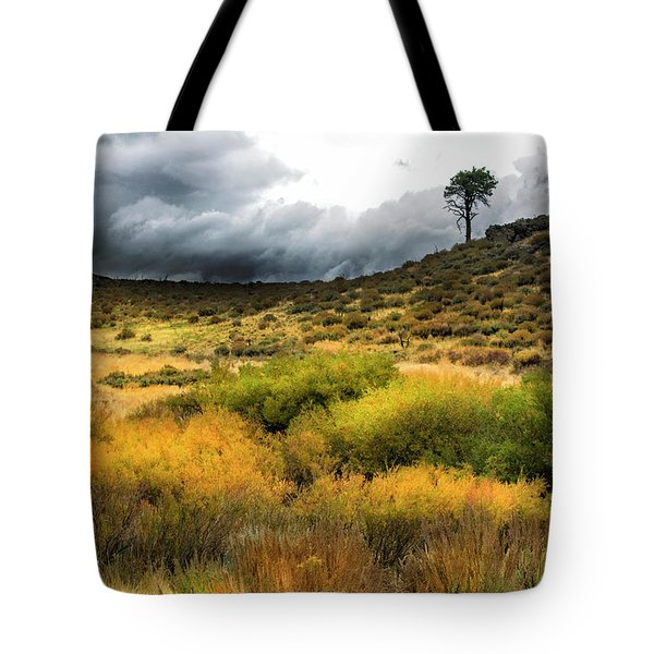 Tote Bag featuring the photograph Solitary Pine by Frank Wilson