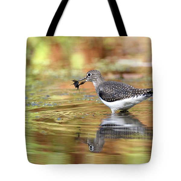 Solitary Sandpiper With Belostomatide Tote Bag