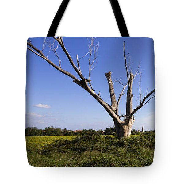 Tote Bag featuring the photograph Solitary Tree by Helga Novelli