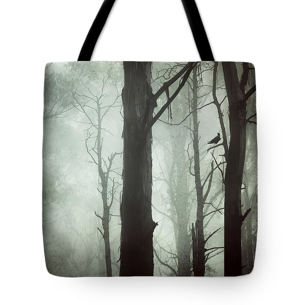 Tote Bag featuring the photograph Solitude by Amy Weiss