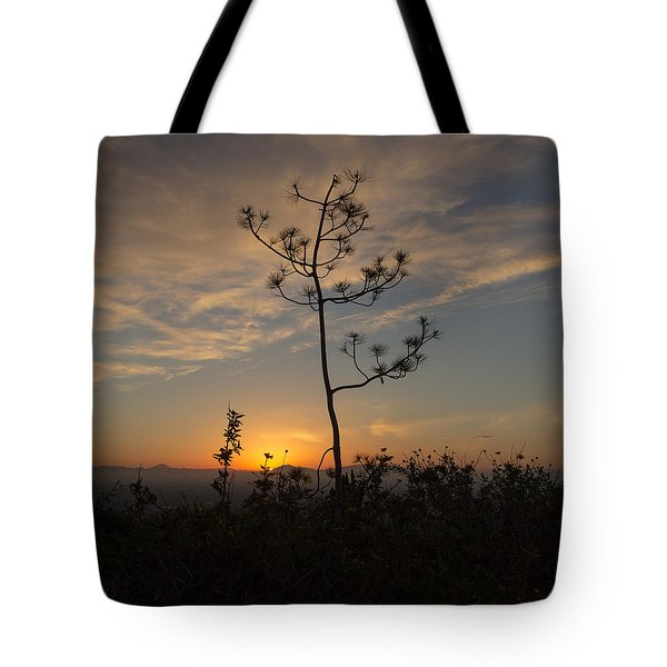 Solitude At Solidad Tote Bag
