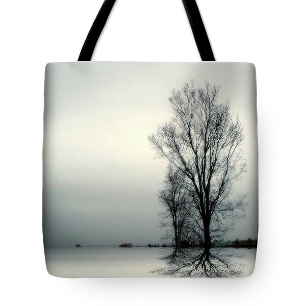 Solitude Tote Bag by Elfriede Fulda